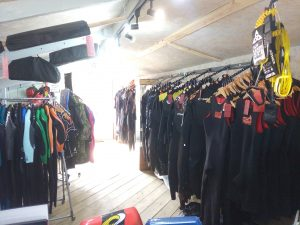 full range of wetsuits for adults and kids in stock for October half term